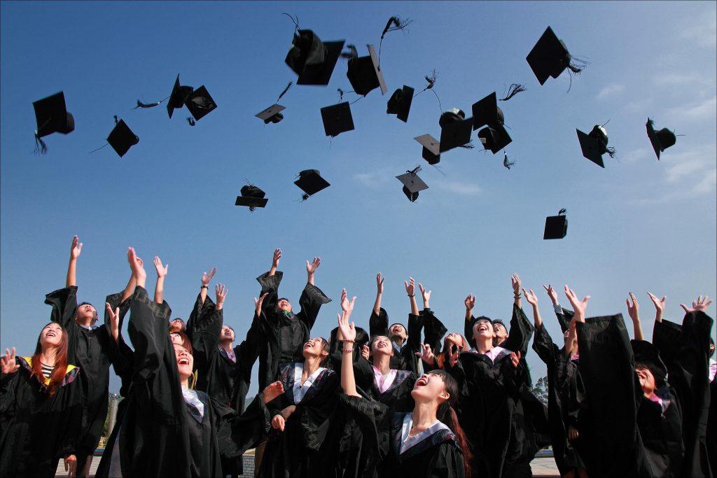graduate jobs in NZ